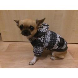 Zimní bunda pro psa Winter červená - vel. S