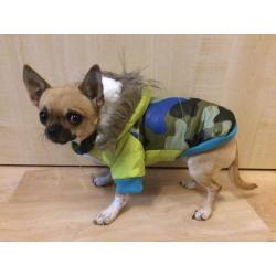 Zimní bunda pro psa ARMY modrá vel. S