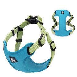 Sportovní postroj pro psa True love modro/zelený