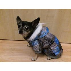 Zimní bunda pro psa kostkovaná modrá - vel. L